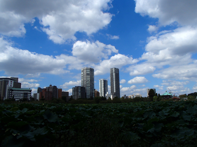 20130929-1不忍池.jpg
